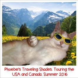 Phoebe's Traveling Shades Tour has begun and we were the first stop