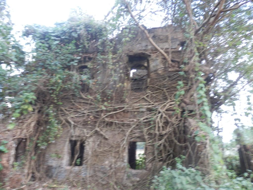 Bangladesh unlocked haunted house near cox bazar for Bangladesh house picture