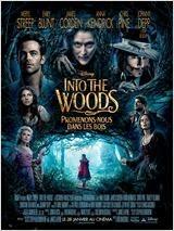 Into the Woods, Promenons-nous dans les bois en Streaming