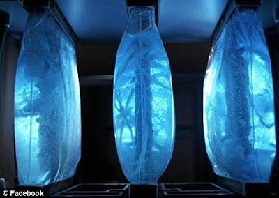 Komputer biologi mungkin jadi kenyataan
