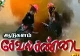 Aadukalam Seval Sandai – Thandhi Tv Pongal Special Program Show 15-01-2014