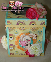 Tissue box tutorial with Christine