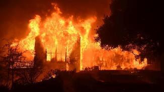 "Tony Berbece 🔴 Am cerut ""foc"" peste România"
