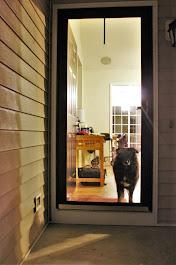 Mandie loves to sit at the door
