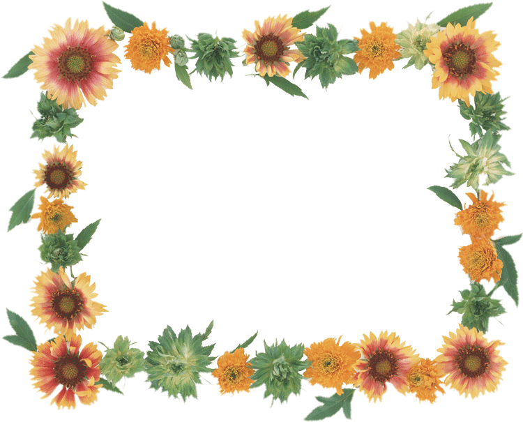 dibujos de flores para fotografias