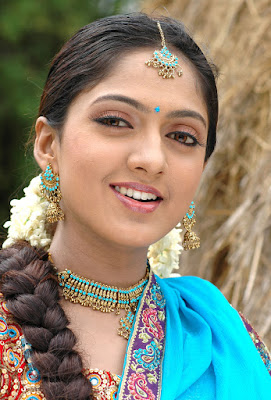 South-Actress-Sheela-Hot-Wallpapers