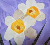 Narcisos.Febrero