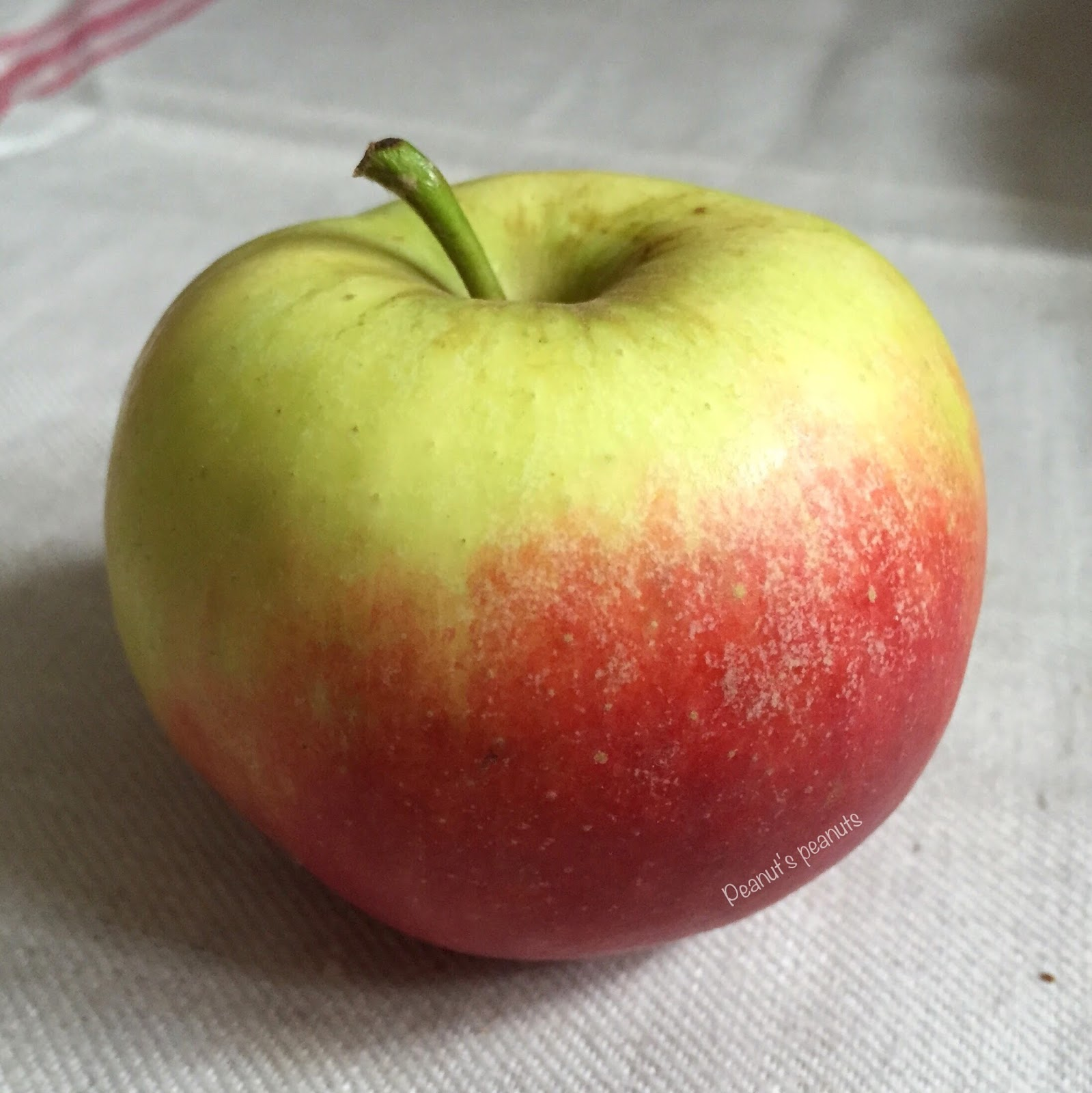 Der Apfel Im Sachunterricht Peanut S Peanuts