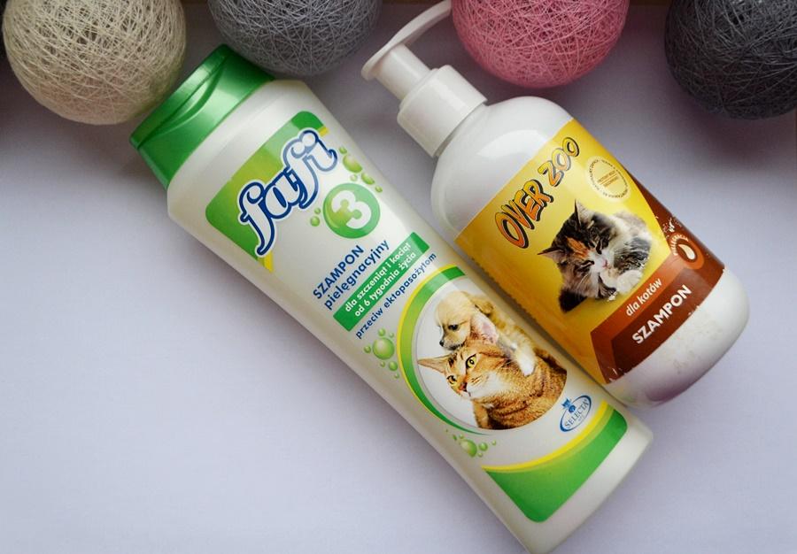 szampon dla kota