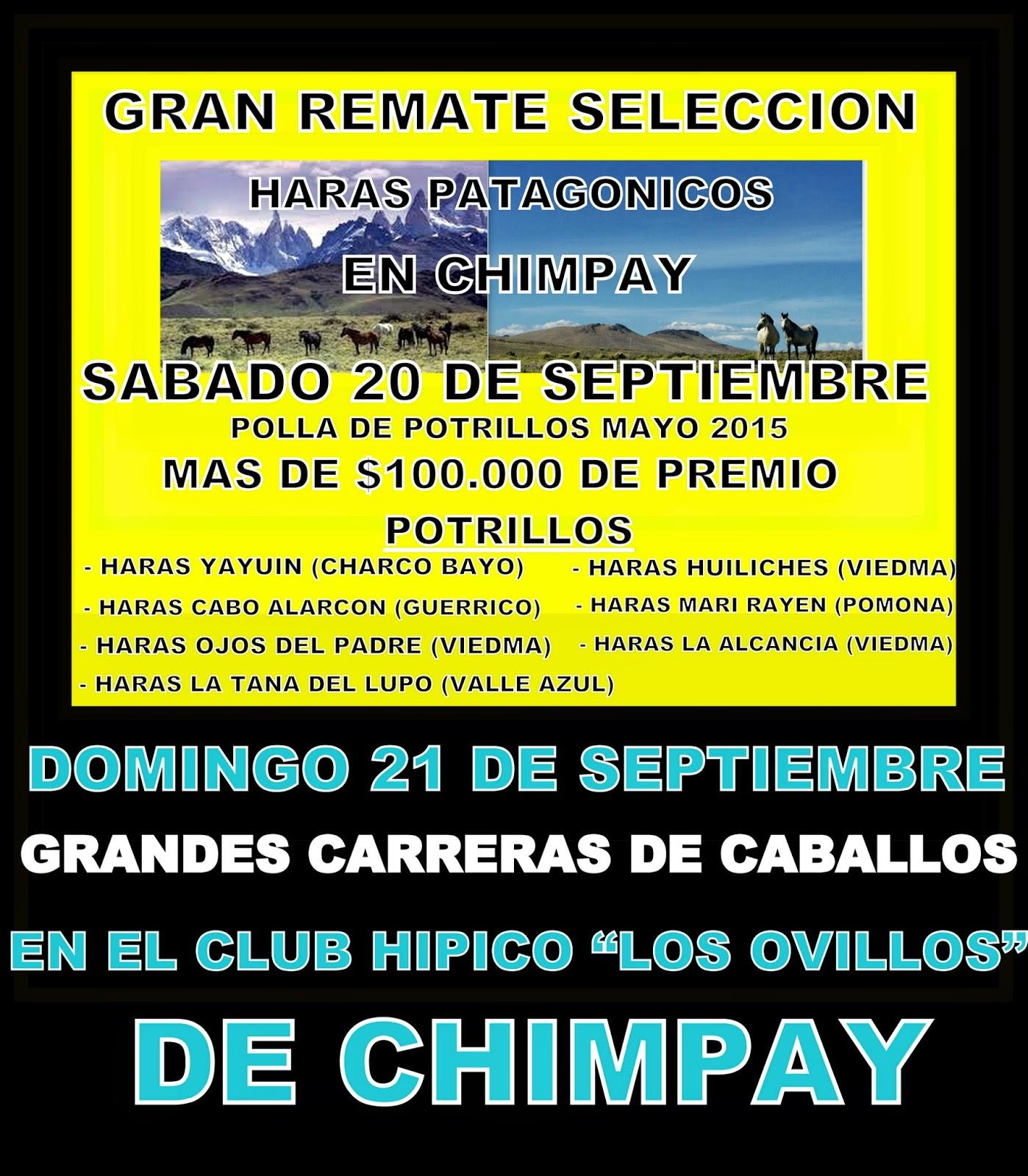 http://turfdelapatagonia.blogspot.com.ar/2014/09/2109-programa-de-carreras-de-caballos_18.html