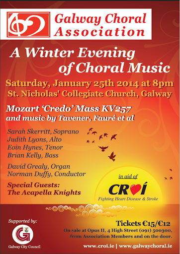 concert in Galway city, 25 January 2014