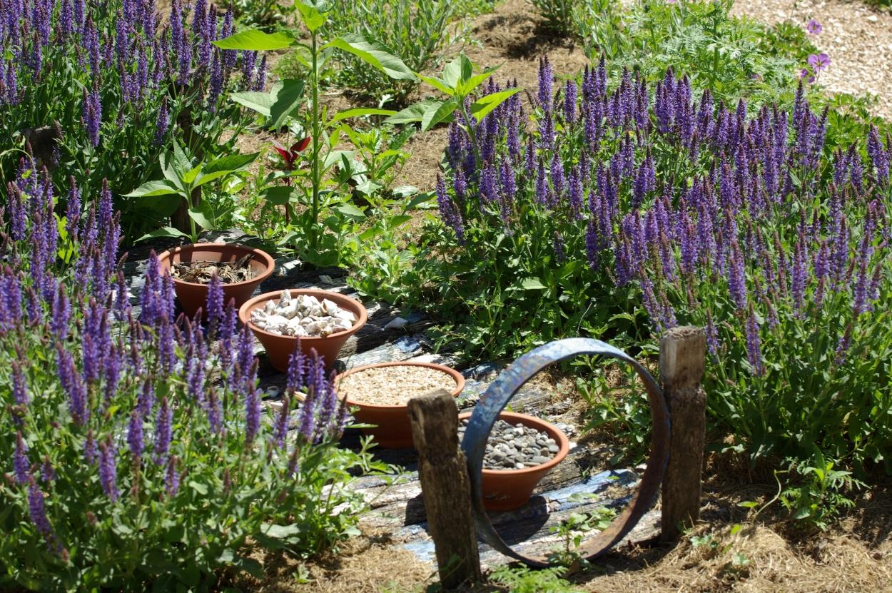 Les jardins de la poterie hillen for Jardin de la