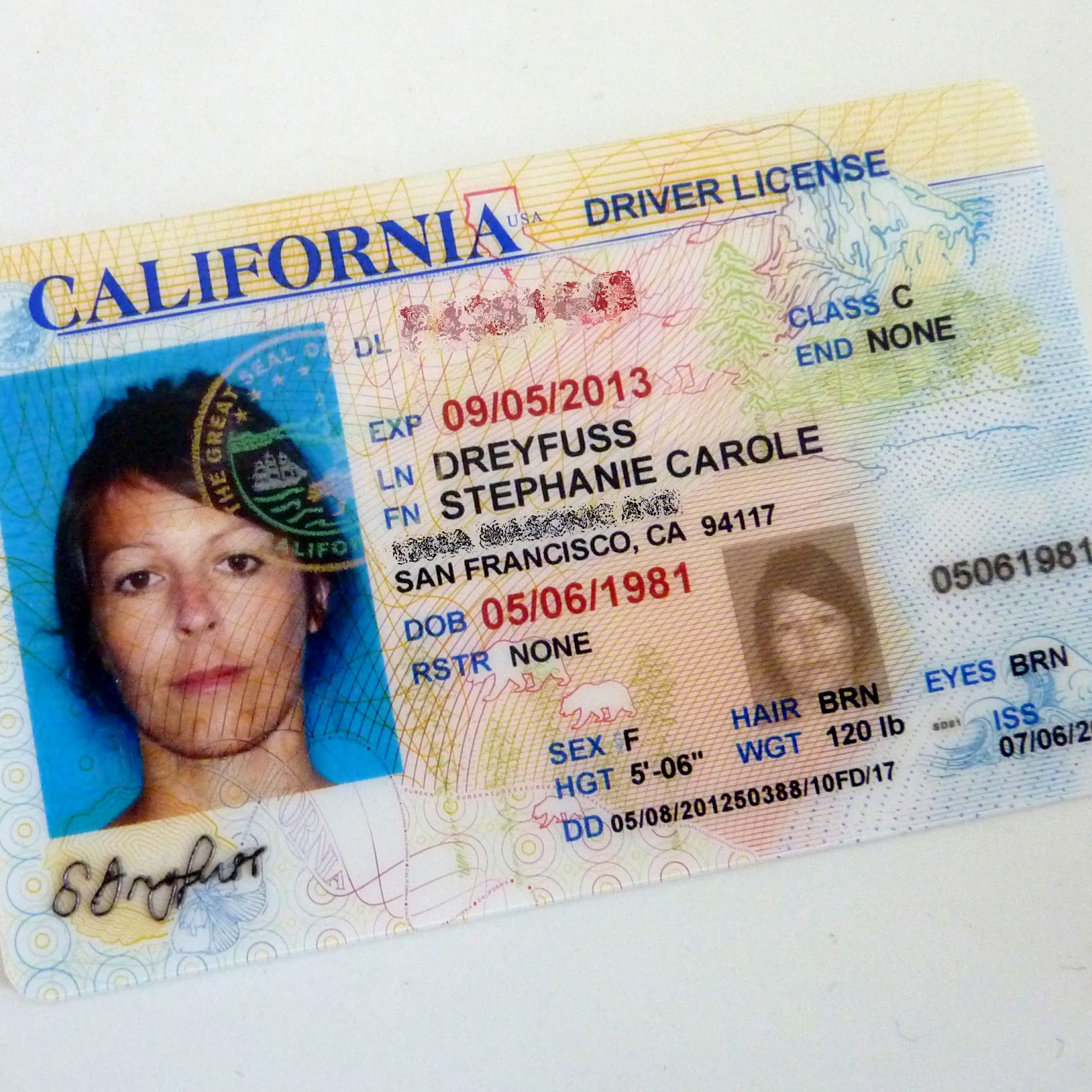 California Driver License Template Psd Free Website 2018