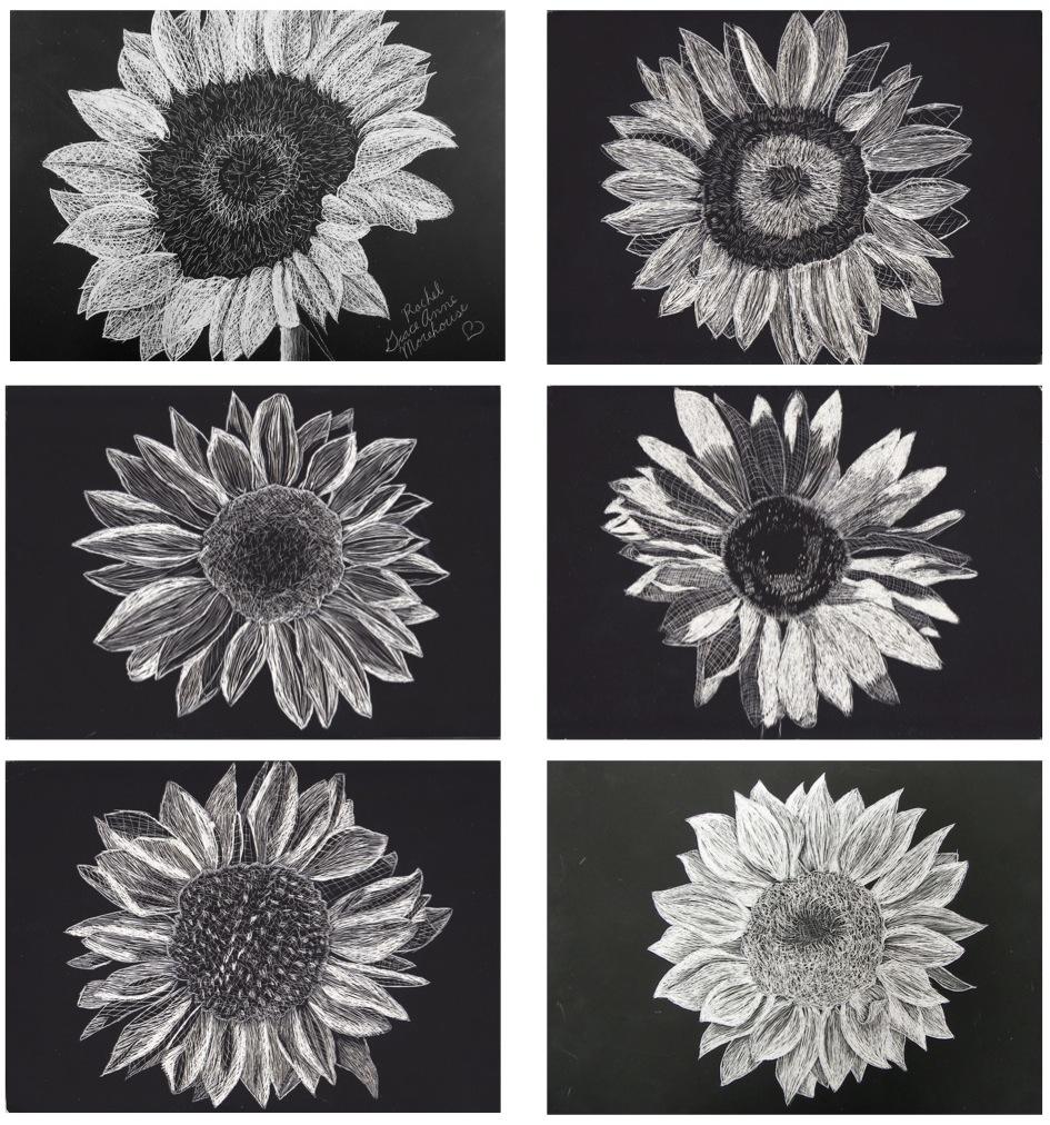 The Rolling Artroom Sunflower Scratch Art