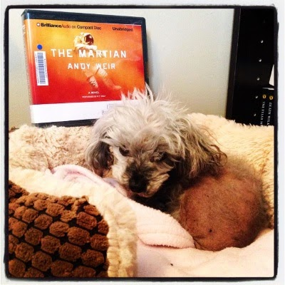 Murchie curls up in a fuzzy-sided dog bed. Behind him is a CD case holding the audio edition of The Martian. Its cover features a person in a white spacesuit floating through a red landscape.