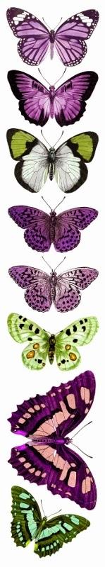 http://sklepik.na-strychu.pl/pl/p/Pasek-Friday-motyle-fioletowo-zielone-UHK-Gallery/18811