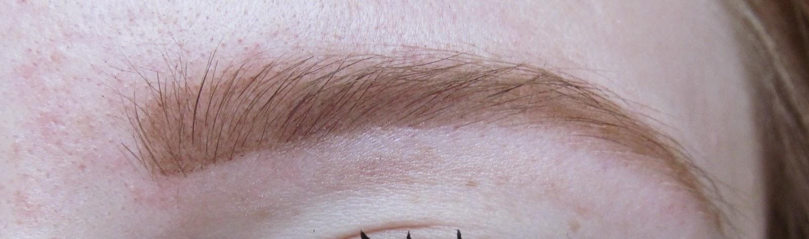 Hi Brow eyebrow