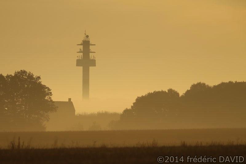 brumes brouillard matin champ silhouettes contre-jour Seine-et-Marne