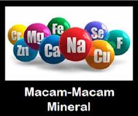 Macam-Macam Fungsi Mineral