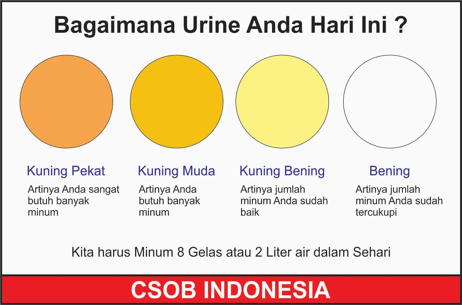 indonesia urine
