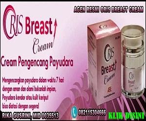 http://www.solusipasutri.org/2013/12/oris-breast-cream.html