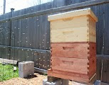 bee keeping hives