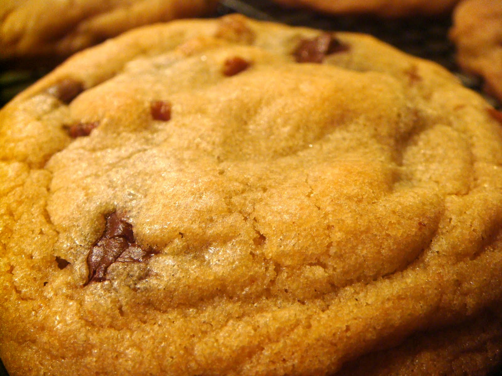 Chewy Chocolate Chip Cookies America S Test Kitchen