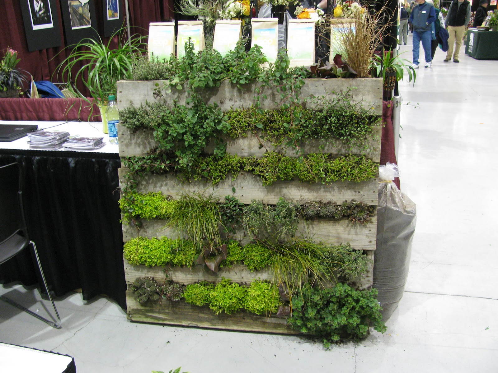 How about a green wall made out of an old wooden pallet?