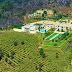 Palazzo di Amore -195 millones de dólares