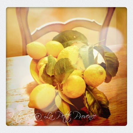 Sitruunan sadonkorjuun aikaan