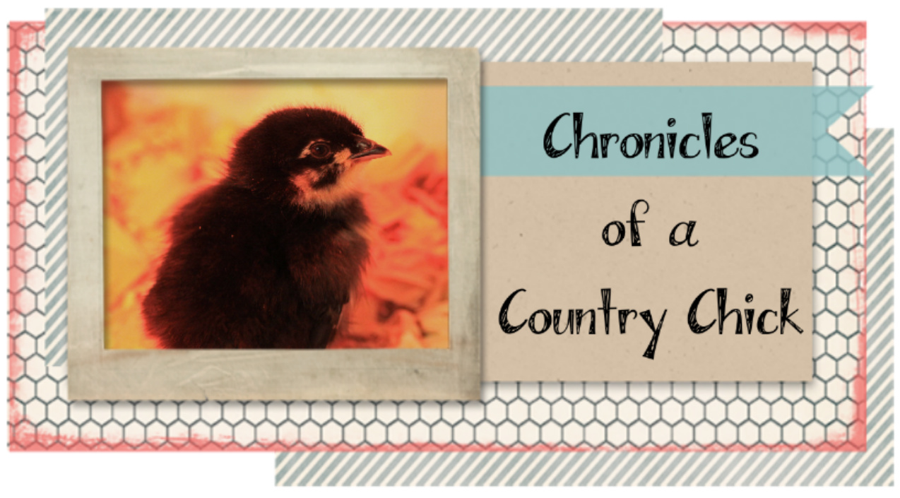 Chronicles of a Country Chick