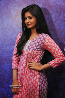 Hyderabad-Love-Story-Actress-Reshmi-Menon-Stills-at-Movie-Press-Meet