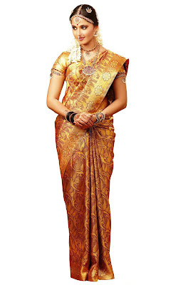 Anushka Hot Spicy in Silk Saree Advertisement Pictures