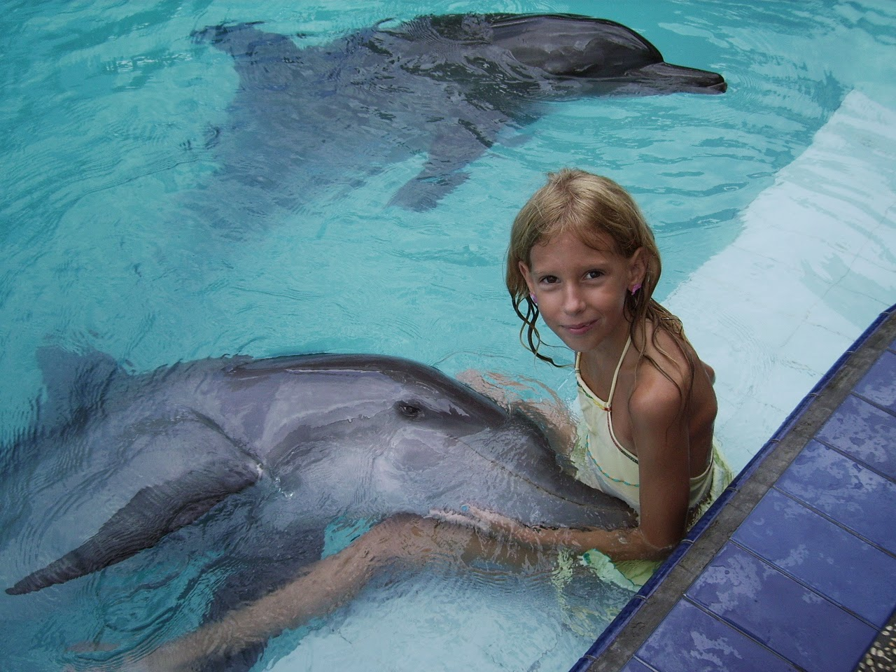 Дельфины и дети фото