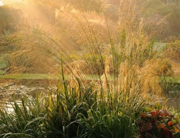 Jardín Beth Chatto