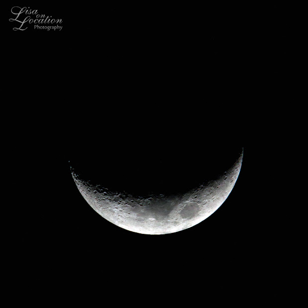 Crescent moon, 365 photo project, Lisa On Location photography