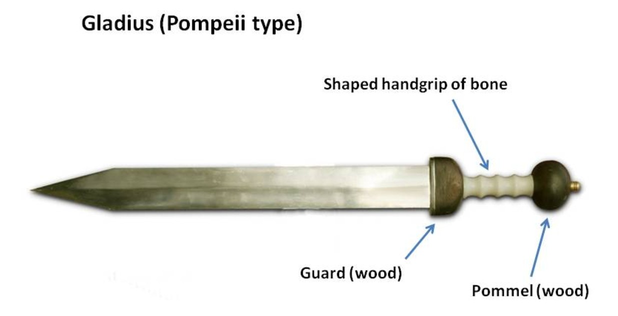 Roman sword Gladius: history and description of weapons
