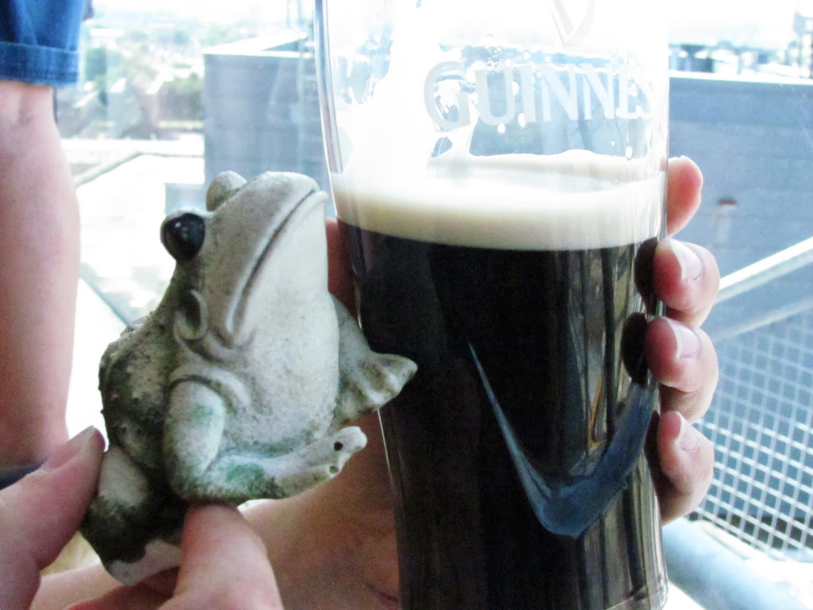 Frog poses with a pint of Guinness at the Guinness Storehouse, Dublin, Ireland