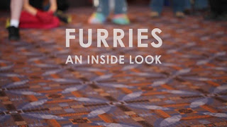 Furries: An Inside Look - Furry fandom is a fandom for fictional anthropomorphic animal characters with human personalities and characteristics.