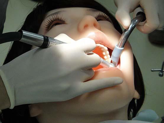 Kết quả hình ảnh cho rotate the dental profile