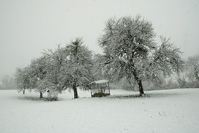 Rural landscape under snowfall in France