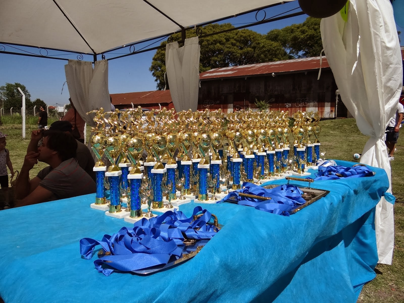 Entrega de Trofeos 2013