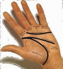 Líneas de las manos