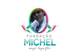 FUNDAÇÃO MICHEL AMIGO BEIJA FLOR