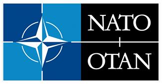 Peter Costea 🔴 România: un model pentru NATO