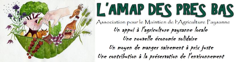 L'AMAP DES PRES BAS