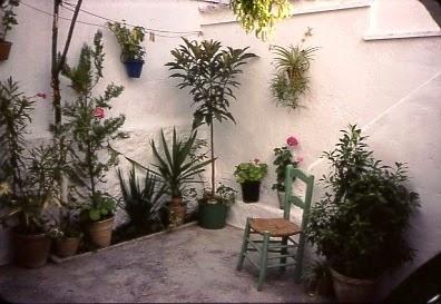 El aprendiz de jardinero macetas algo de historia - Macetas para interiores ...