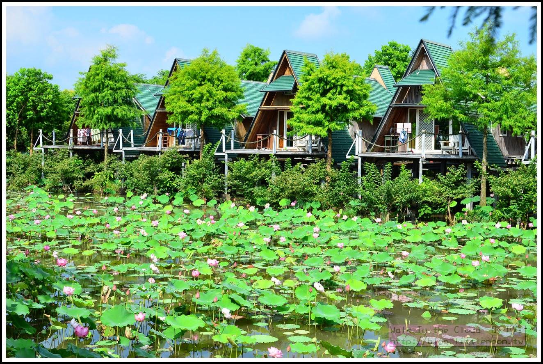 風箏小木屋與蓮花池