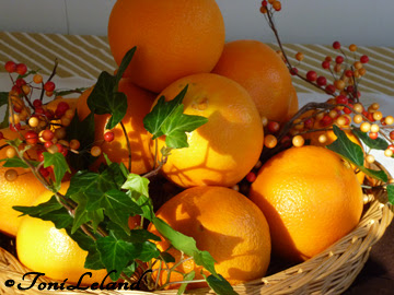 Oranges in autumn by Toni Leland