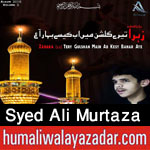 http://www.humaliwalayazadar.com/2015/10/syed-ali-murtaza-nohay-2016.html